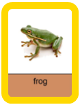 Audio Flashcards - Reptiles and Amphibians