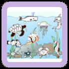 Color the Picture - Sea Animals